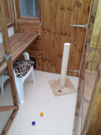 Willow Cottage Cattery